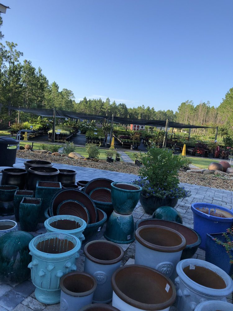Durbin Creek Nursery: 4286 Race Track Rd, Saint Johns, FL