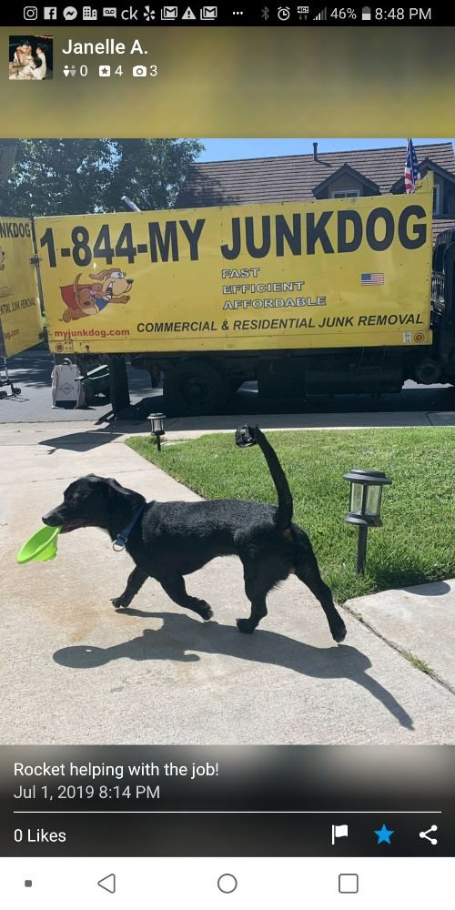 My Junk Dog Junk Removal, Demolition & Hauling