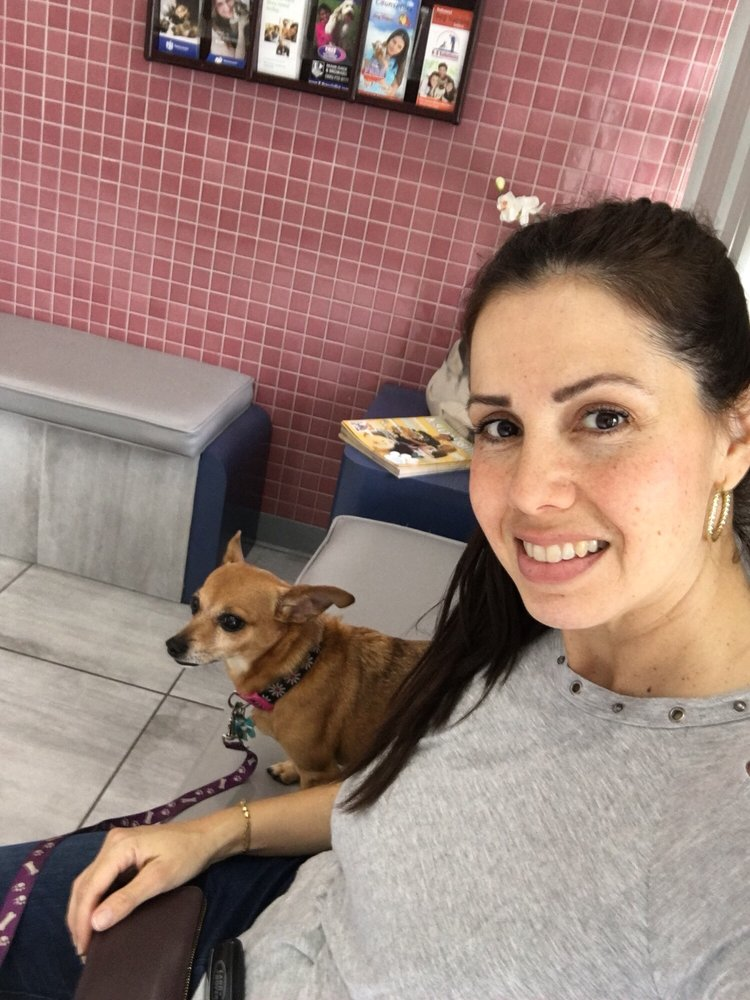 Miami Lakes Veterinary Clinic: 15504 NW 77th Ct, Miami Lakes, FL