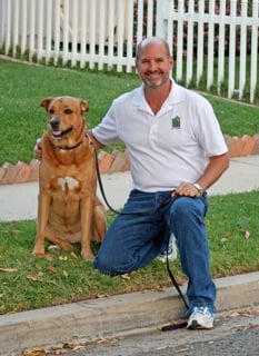 Sit Stay Come Dog Training