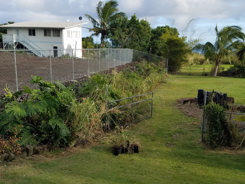 On The Line Fencing: Keaau, HI