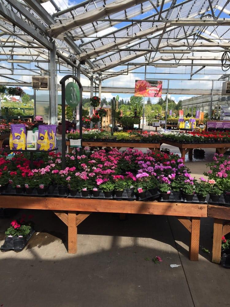 Al S Garden Center 23 Photos Nurseries Gardening
