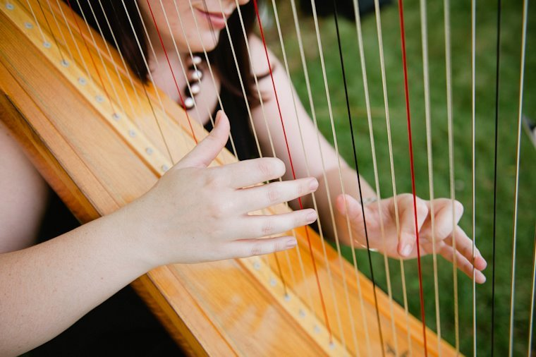 The Classic Harpist: Jacksonville, IL