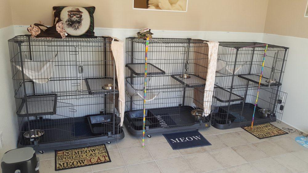 Bridget's Pet Resort: 6607 Colleyville Blvd, Colleyville, TX