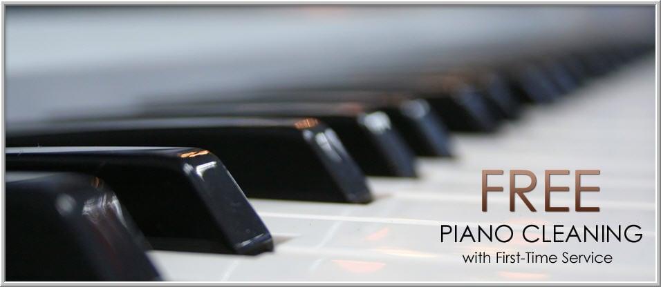 Doug Yadevia's Piano Service & Lessons: 116 Priscilla Ln, Aldan, PA