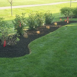 Photo Of Jason Conway Lawn Care   Lexington, KY, United States. Cut Out