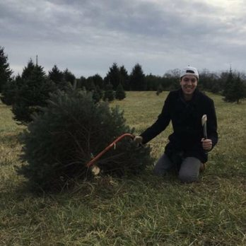 Photo of Middleburg Christmas Tree Farm - Round Hill, VA, United States - Middleburg Christmas Tree Farm - 37 Photos & 42 Reviews - Christmas