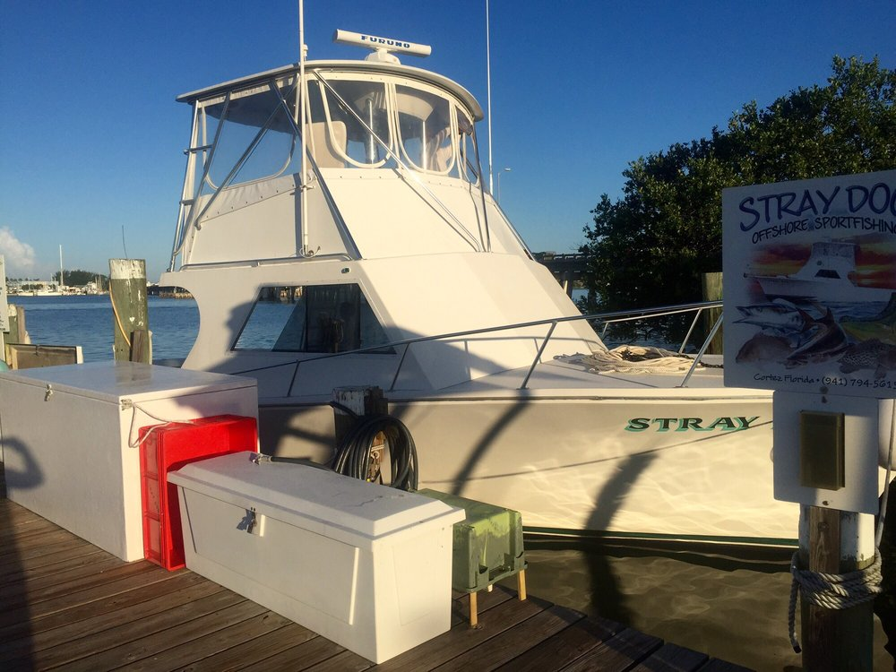 Stray Dog Charters Reviews