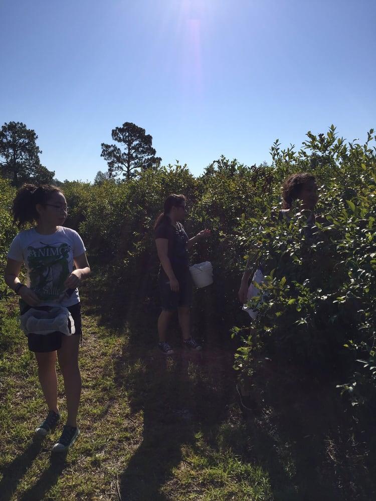 Berry Hill Farm: 219 Bluefield Rd, Lexington, SC