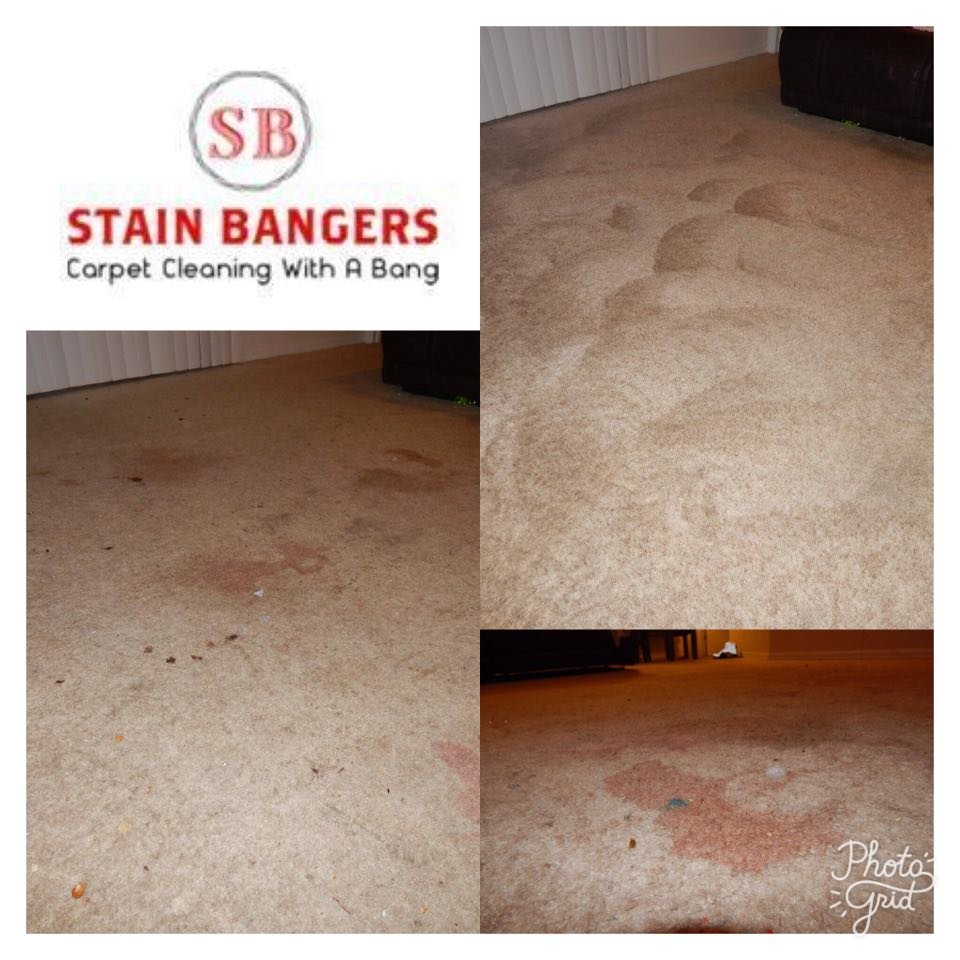 Stain Bangers: 13194 US Hwy 301, Riverview, FL