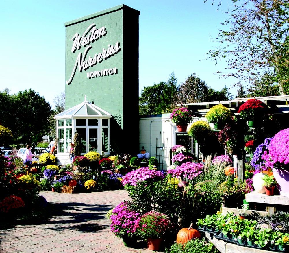 Photo Of Weston Nurseries Hopkinton Ma United States Fall At