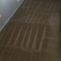 Carpet Cleaning Mesa Az Top Rated In 24 A Room