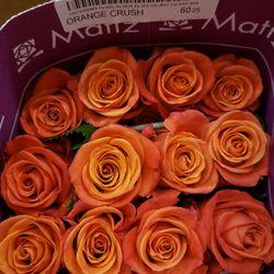 Photo of L & G Wholesale - Houston, TX, United States. Orange Crush