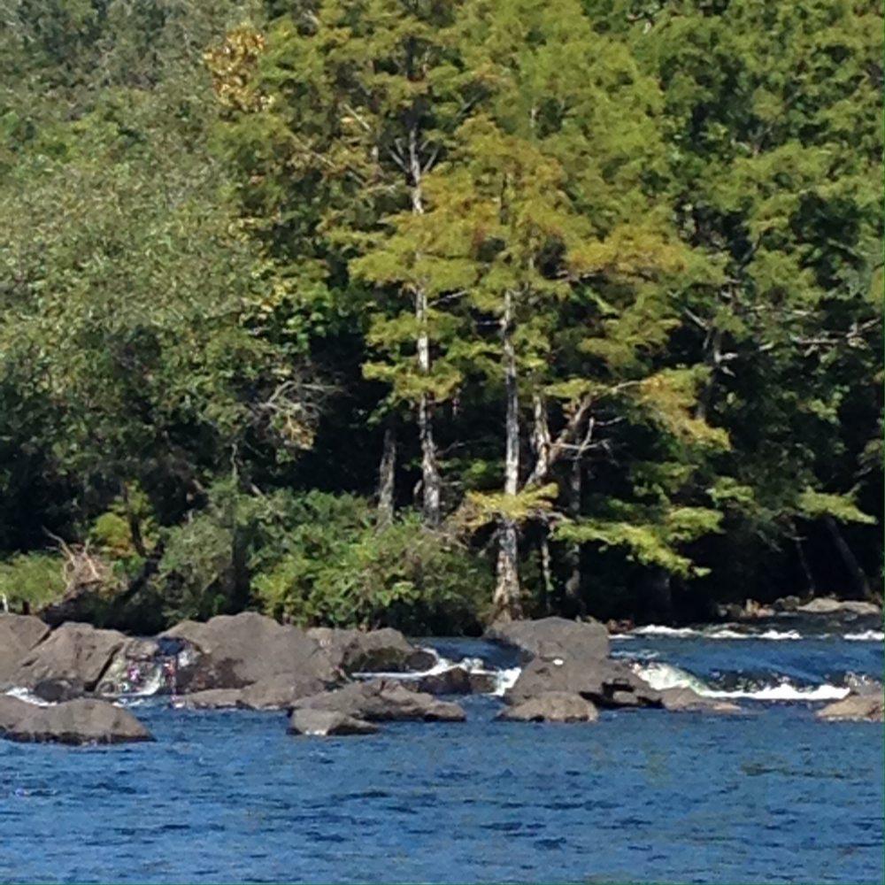 Yippie Kayo Kayaks: 5900 E Hwy 70, Broken Bow, OK