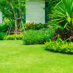 Image result for 27 Lawn Services