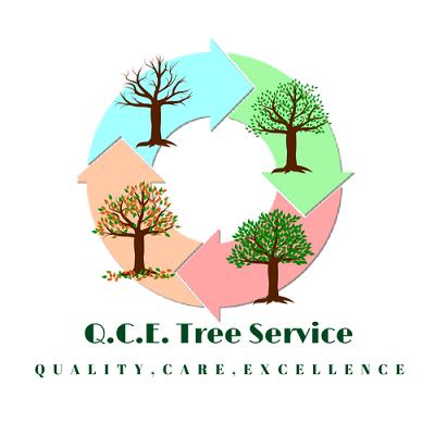 Qce Tree Service: Dittmer, MO