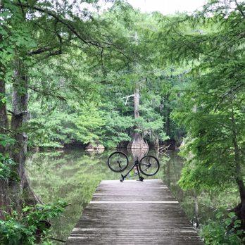 Lake Houston Wilderness Park 109 Photos 32 Reviews Parks
