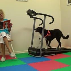 Trick Dog U K9 Training Academy - Pet Training - 12029
