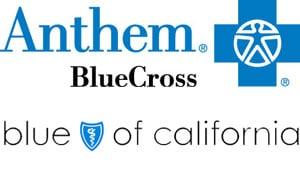 blue cross blue shield florida customer service