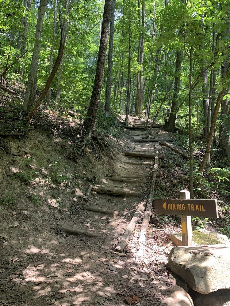 Laurel Highlands Hiking Trail: Pennsylvania 56 & T901, St. Clair, PA