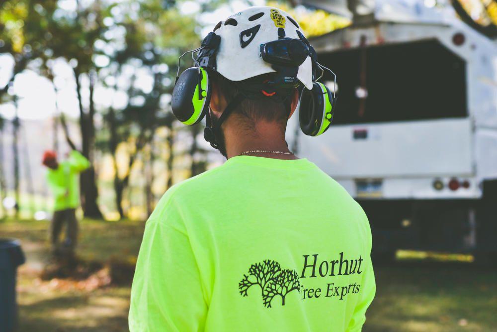Horhut Tree Experts: Pittsburgh, PA