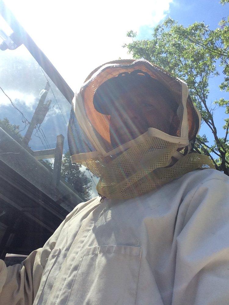 Weiner Pest Services