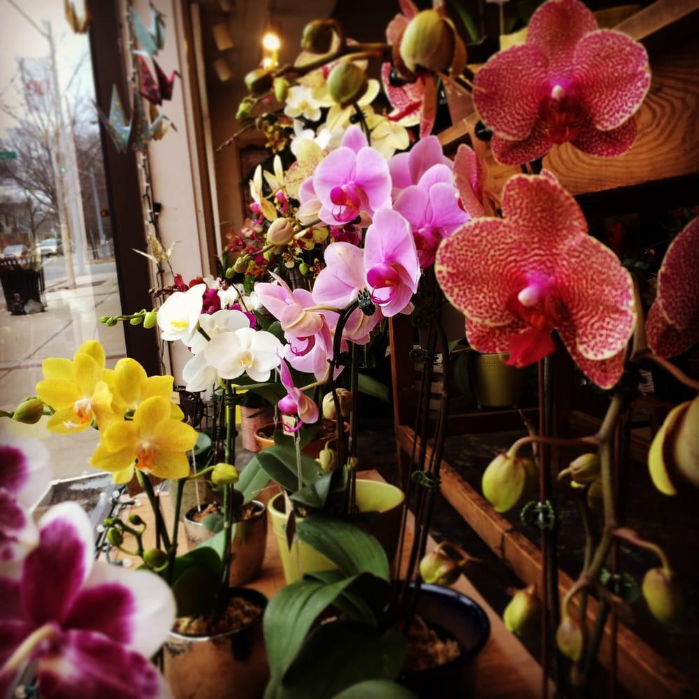 Crestwood Flowers