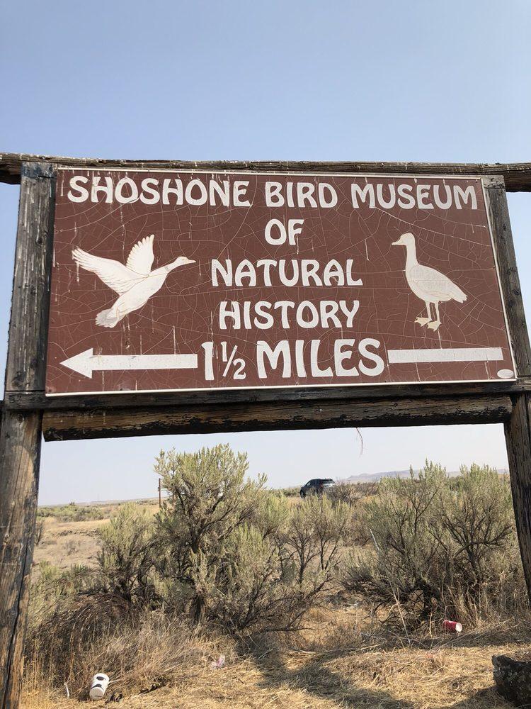Shoshone Bird Museum of Natural History: 100 Mammoth Cave Civil Defense Rd, Shoshone, ID