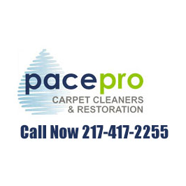 Pace Pro Carpet Cleaners and Restoration: 306 Tiffany Ct, Champaign, IL