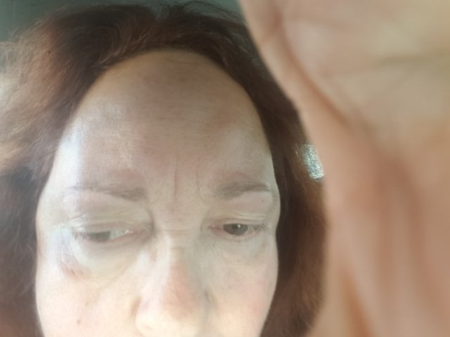 Left Eyebrow Lost The 2nd Half No Natural Bottom Line She Trimmed