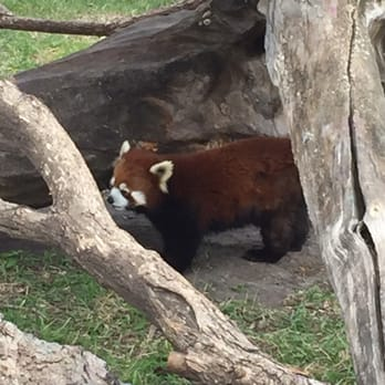 Photo Of Red River Zoo Fargo Nd United States Love The