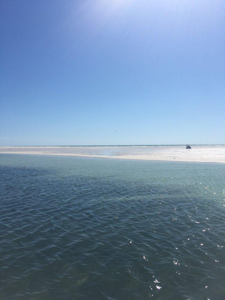 Dream Catcher Explorations: 198 Seminole St, Clearwater, FL