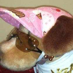 Photo Of Fergieu0027s Closet Doggie Boutique   Naples, FL, United States