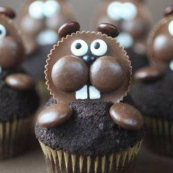 cupcakes springfield il