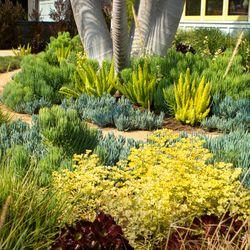 june scott design 12 photos landscape architects 2040 la