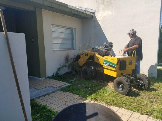 Acosta Tree Service