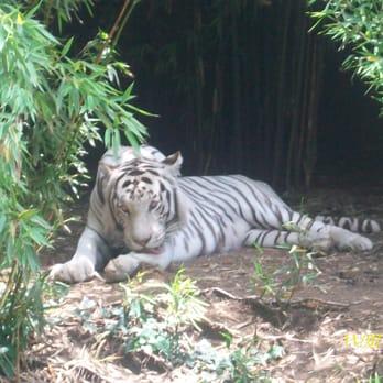 Parque Zoolgico de Len  37 fotos y 19 reseas  Zoolgicos