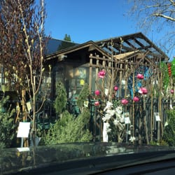 Photo Of Sloat Garden Center Danville Ca United States Things Are Blooming
