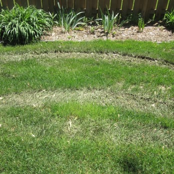 Diamond Lawn Care Landscaping 5255 Green Meadows Rd