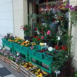 Vivero flora y fauna flores y regalos pueyrredon 721 for Viveros en rosario