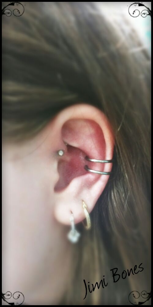 Perfectly Spaced Double Conch Piercing Yelp