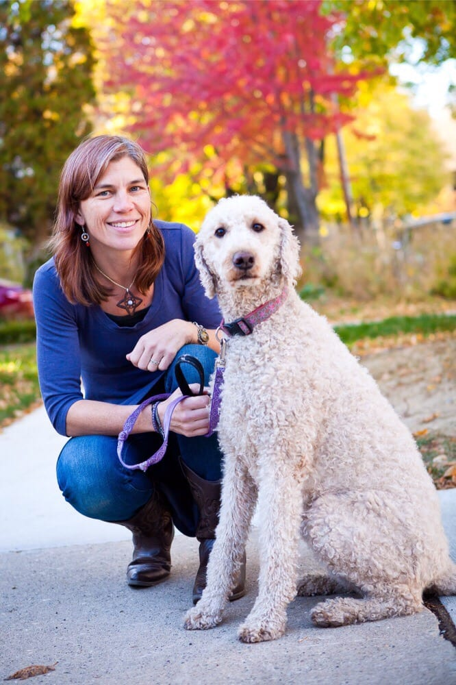 HarmonyVet Acupuncture and Spine Care: 4502 Monona Dr, Madison, WI