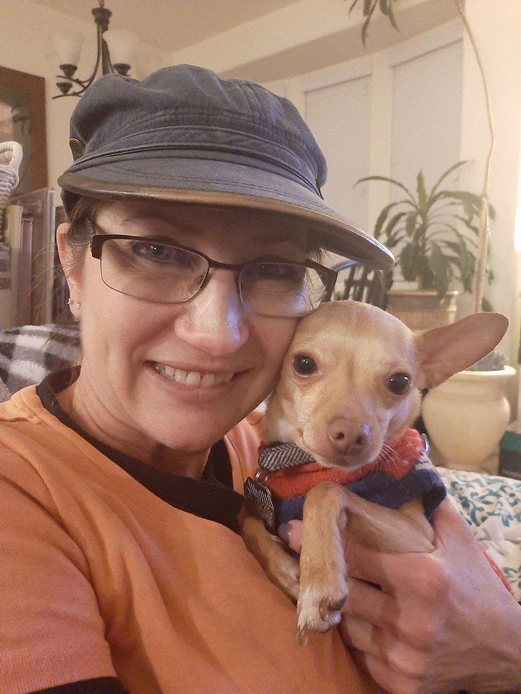 BowWow & Meow Pet Sitting: Chino Valley, AZ