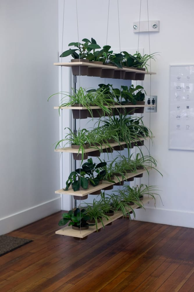Crooked Nest Swell Spaces custom plant ladderroom divider Yelp