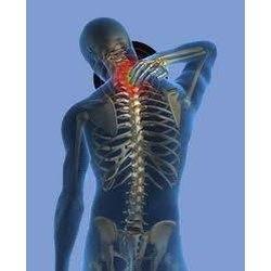 Alpharetta Chiropractor