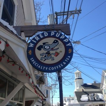Wired Puppy Provincetown - 46 Photos & 129 Reviews - Coffee & Tea ...