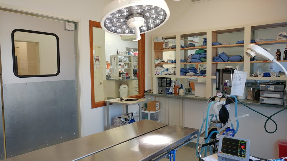 North Country Veterinary Clinic: W6880 Hilly Haven Ln, Phillips, WI