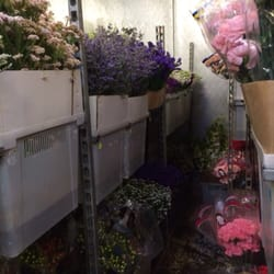 Photo of Harold's Wholesale Florist - Saint Louis, MO, United States. Rows and