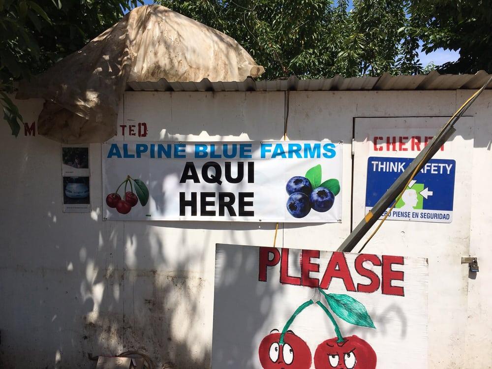Alpine Blue Farms: 7490 E Hwy 26, Stockton, CA