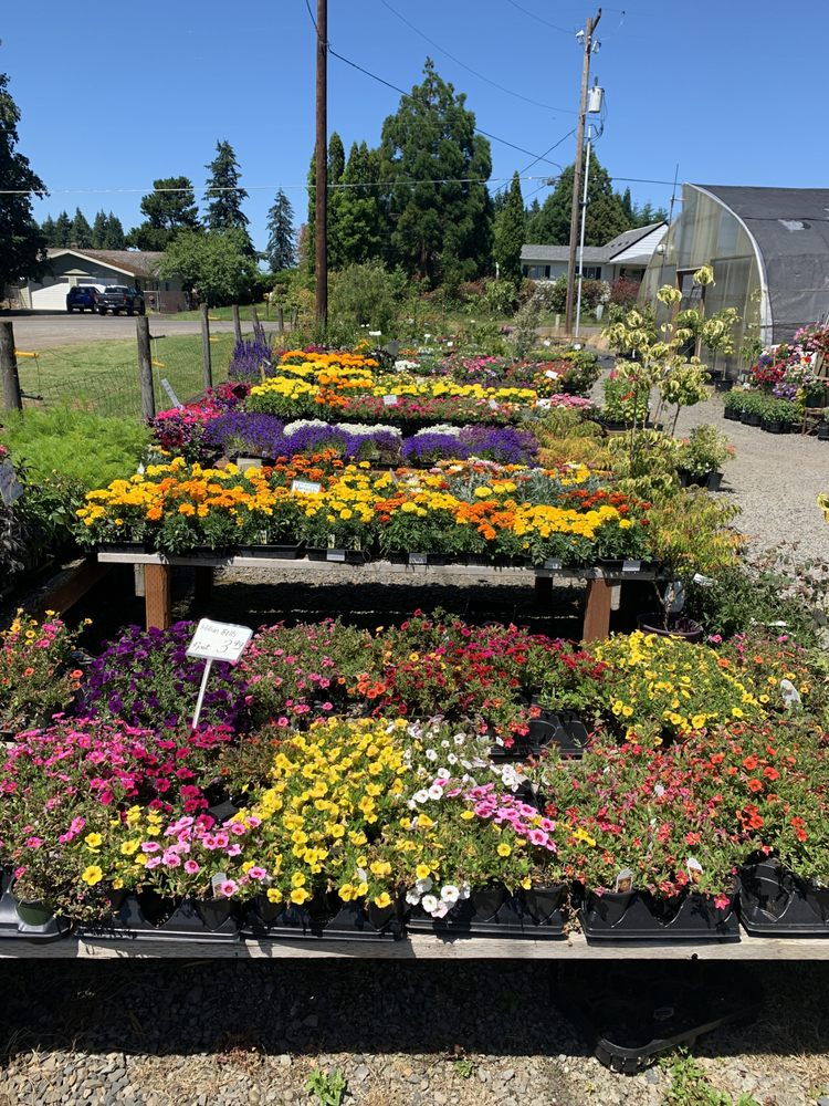 Cascade Greenhouse: 6005 NE 139th St, Vancouver, WA